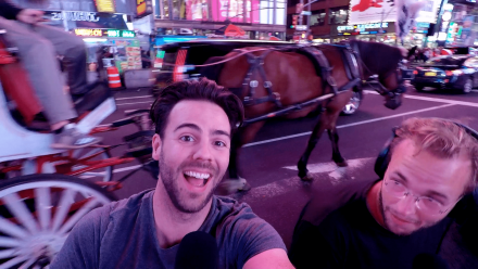 Horse-Incident-Times-Square-The-Daily-Talk-Show-TDTSbits